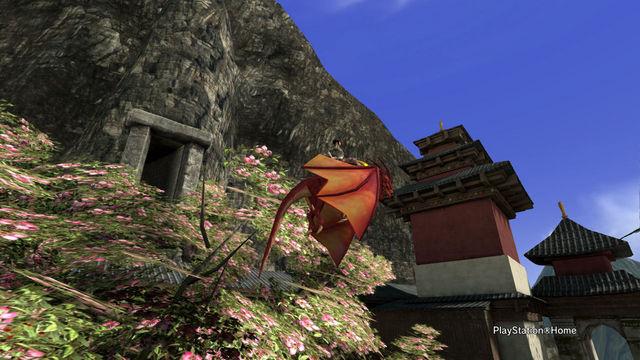 Dragon Cam_8.jpg