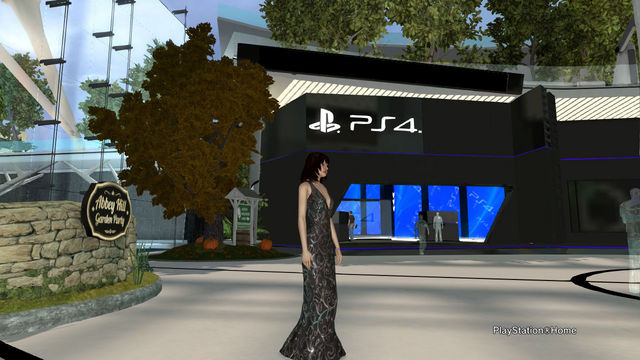 PlayStation(R)Home Picture 2013-11-21 02-29-27.jpg
