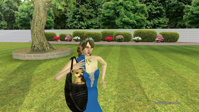 PlayStation(R)Home Picture 2014-05-24 23-07-18.jpg