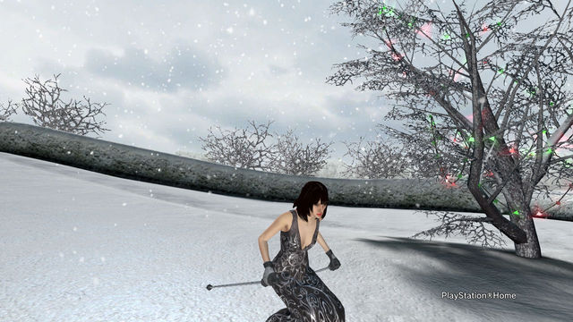 PlayStation(R)Home Picture 2014-01-28 16-42-00.jpg